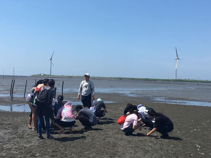 華大學生在芳苑普天宮潮間帶進行生態體驗