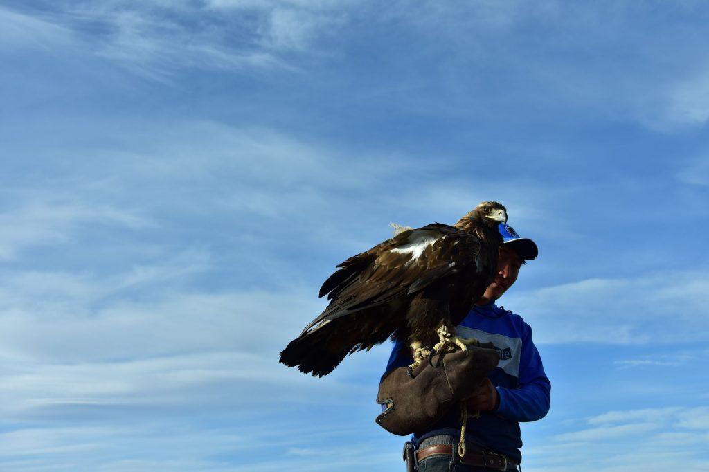 鷹獵人與金雕。 Photo Credit:廖珮岑 提供